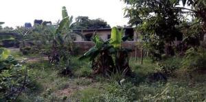 Detached Bungalow House for sale Uguta Owerri Imo