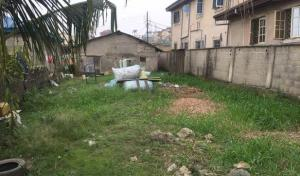 Mixed   Use Land Land for sale Omoasejere street, Ogudu. Ojota. Lagos  Ogudu Ogudu Lagos