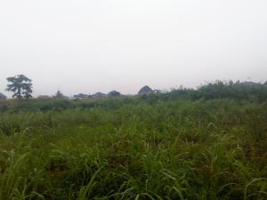 Land for sale Abiola Estate Ayobo Ipaja Lagos Ayobo Ipaja Lagos