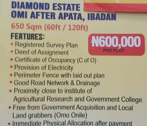 Mixed   Use Land Land for sale Diamond estate omi after pasta,ibadan,oyo state Apata Ibadan Oyo