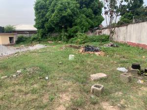 Residential Land Land for sale Igbo efon off the express way  Igbo-efon Lekki Lagos