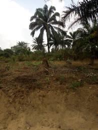 Land for sale Shelter Afrique. Uyo Akwa Ibom
