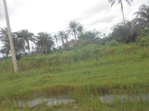 Land for sale Shelter Afrique Extension, Uyo. Uyo Akwa Ibom