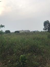Residential Land Land for sale Shelter Afrique Uyo Akwa Ibom