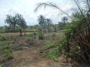 Mixed   Use Land Land for sale Ibom Meridian Hotel and Resort Road, Uyo Uyo Akwa Ibom