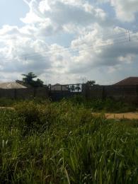Land for sale Ikot Akpabio, Mbiaobong Etoi Uyo Akwa Ibom