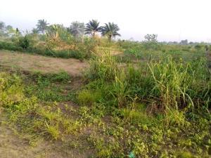 Land for sale Airport road Uyo Akwa Ibom