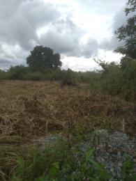 Residential Land Land for sale Idunmwungha community along Egba road Uhunmwonde Edo