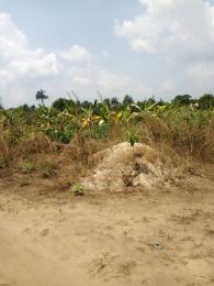 Land for sale Shelter Afrique Uyo Akwa Ibom