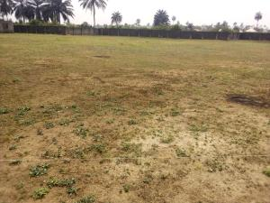 Land for sale Nellyani Homes Estate, Ifa Ikot Okpon, Uyo. Akwa ibom state. Uyo Akwa Ibom
