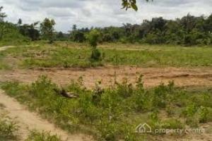 Mixed   Use Land Land for sale Ajao Road, Off Adeniyi Jones Avenue Awolowo way Ikeja Lagos