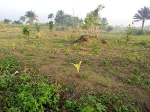 Land for sale Off Shelter Afrique Uyo Akwa Ibom