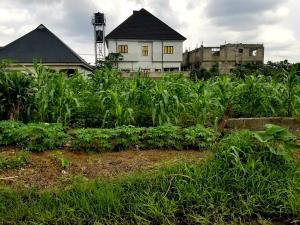 Land for sale At Odani Green City Estate,  Elelenwo Port Harcourt Rivers
