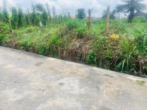 Land for sale At Rumuibekwe Housing Estate Off Aba Road by SHELL R. A  Port Harcourt Rivers
