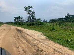 Land for sale Off Port Harcourt/ Aba Expressway Akpajo Obia-Akpor Port Harcourt Rivers