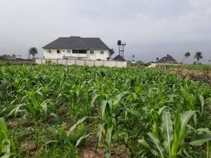 Land for sale Off Port Harcourt International Airport Road Port Harcourt Rivers