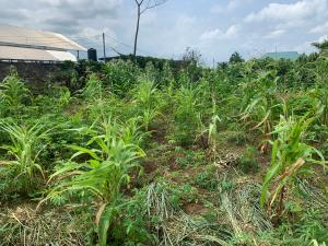 Land for sale Off Obirikwere - Airport link Road near OPM church  Port Harcourt Rivers