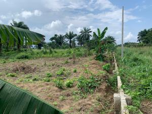 Land for sale At Quiet Haven Layout, near Port Harcourt International  Airport, Ipo Town Port Harcourt Rivers