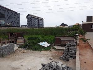 Mixed   Use Land Land for sale ELEGANZA BUS STOP directly opposite Oluwanisola palace. Lekki Lagos