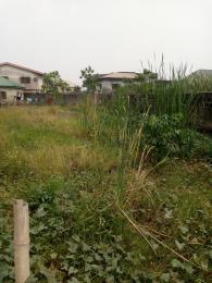 Mixed   Use Land Land for sale Folarin bustop Badore Ajah Lagos