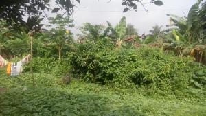 Residential Land Land for sale Aluu,Off The Roundabout And 5Mins Bike To The Campus Ikwerre Port Harcourt Rivers