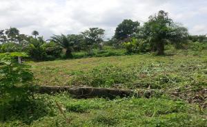 Land for sale Egbewa Ado-Ekiti Ekiti