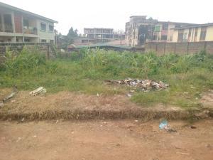 Commercial Land Land for sale Behind UBA bank Apata ibadan Apata Ibadan Oyo