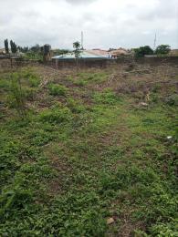 Residential Land Land for sale Blue Gate Avenue Oluyole Estate Ibadan Oyo