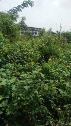 Land for sale Sanyo ( by the road side ) Iwo Rd Ibadan Oyo