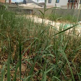 Land for sale   Badore Ajah Lagos