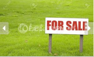 Mixed   Use Land Land for sale Opposite right wing filling station izuoma-asa oyigbo Oyigbo Rivers