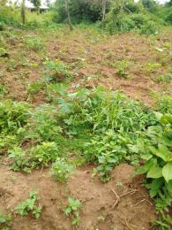 Land for sale Aule, Akure Akure Ondo