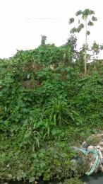 Mixed   Use Land Land for sale 6 Thomas street, behind Spacc, poly road,  Santo, Ibadan.  Ibadan polytechnic/ University of Ibadan Ibadan Oyo