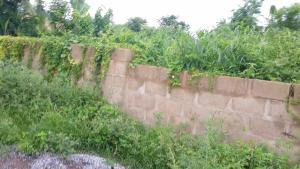 Land for sale Idi Eru Odo ona Ibadan Oyo