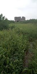 Residential Land Land for sale  Zenith Estate, Isheri Oshun, after Bucknor Ejigbo Ejigbo Ejigbo Lagos