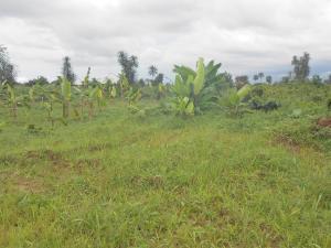 Residential Land Land for sale Nung Ete, Uyo Akwa Ibom