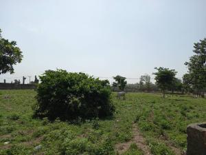 Commercial Land for sale Jabi Jabi Abuja