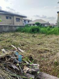 Mixed   Use Land Land for sale Peace Estate Soluyi Gbagada Lagos