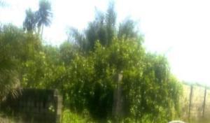 Mixed   Use Land for sale Okun Ajah Ogombo Ajah Lagos