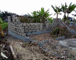 2 bedroom Mixed   Use Land Land for sale agunfoye  Igbogbo Ikorodu Lagos