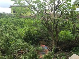 Residential Land Land for sale behinde xpress gas akobo ibadan Akobo Ibadan Oyo