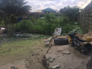 Residential Land Land for sale Victor Okwudo Street Seaside Estate Badore Badore Ajah Lagos