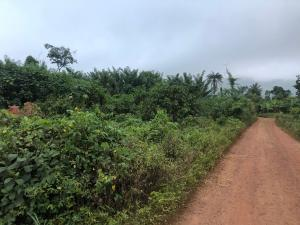 3 bedroom Residential Land Land for sale Ado ekiti along Ikere road  Ado-Ekiti Ekiti