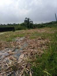 Residential Land Land for sale Back of Genesis Secondary School, Ado Ajah Lagos