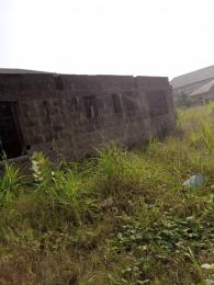 Mixed   Use Land for sale Z Agric Ikorodu Lagos