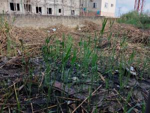 Mixed   Use Land Land for sale Infinity Estate Ado Ajah Lagos