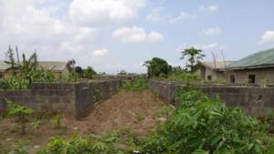 Residential Land Land for sale - Odongunyan Ikorodu Lagos