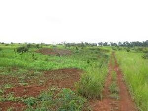 Residential Land Land for sale  Eastern Home Nkwubor Emene Enugu Enugu