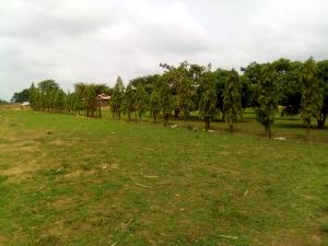 Mixed   Use Land Land for sale Ungwan Doma Along Abuja Kaduna Way Kaduna South Kaduna