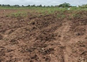 Commercial Land Land for sale  idumota Lagos Island Lagos Island Lagos Island Lagos